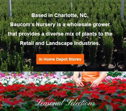 Baucomu0027s Nursery In Home Depot Stores